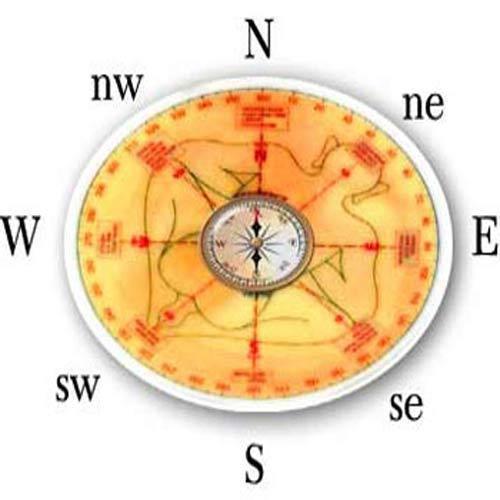 vastu Astrology Consultation